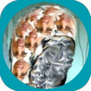 Figunetik-App-teste-dich
