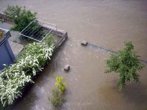 hochwasser-meissen-08-06-2013-13-uhr